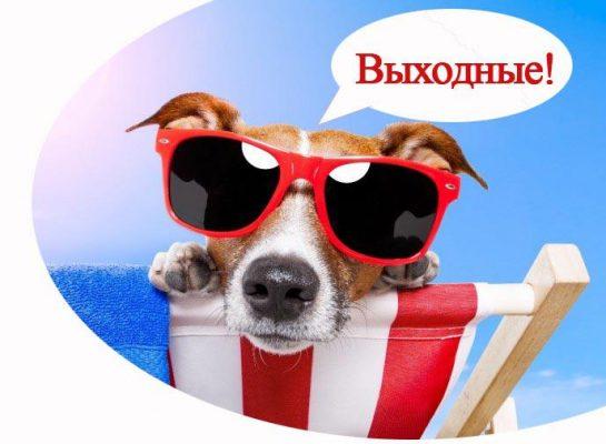 Автобусом из Тулы по России Туры выходного дня Однодневные туры