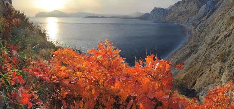 «Великолепие Русской Ривьеры» Крым